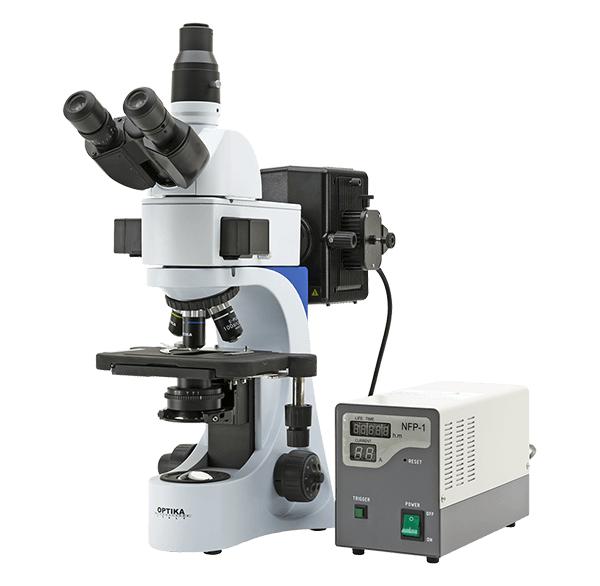 Лабораторный микроскоп B-383 FL от Optika Microscopes
